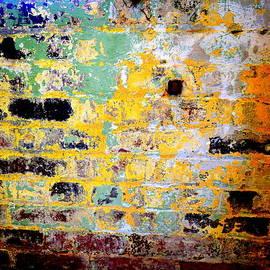 Kathy Barney - Brick Wall from Huntington Castle