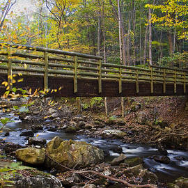 Amy Jackson - Bridge In Autumn