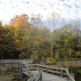 Guy Ricketts - Bridge into Autumn