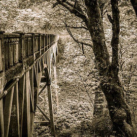 Wes and Dotty Weber - Bridge Into Your Dreams D7601