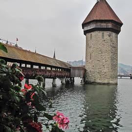 Elvis Vaughn - Bridge Over the Reuss