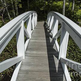 Ruth H Curtis - Bridge to Woods