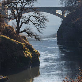 Angie Vogel - Bridges Over the Klickitat