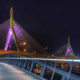 Joann Vitali - Bridges - Zakim Bridge Boston