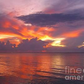 Kassia Ott - Briliant Sunset