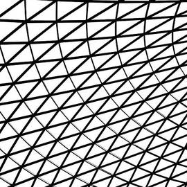Rona Black - British Museum Geometry