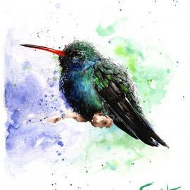 Eric Sweet - Broad billed hummingbird painting