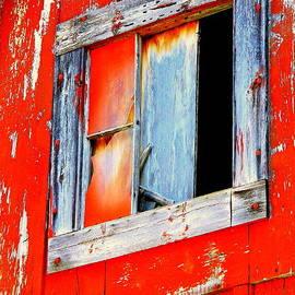 Kathy Barney - Broken Red Window