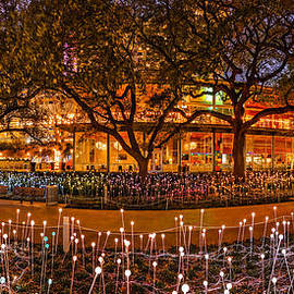 Silvio Ligutti - Bruce Munro Field of Lights Panorama at Discovery Green Park - Downtown Houston Texas