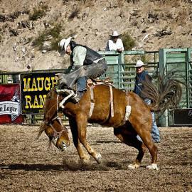 Priscilla Burgers - Bucking Bronco at Wickenburg Senior Pro Rodeo