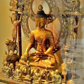 Kim Bemis - Buddha Statue - Albert Hall - Jaipur India