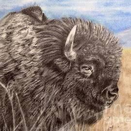 Keiko Olds - Buffalo