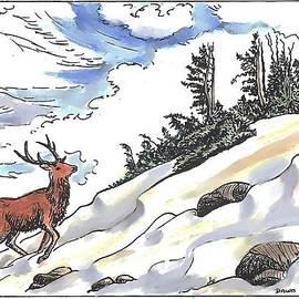 Dawn Senior-Trask - Bull Elk at Timberline