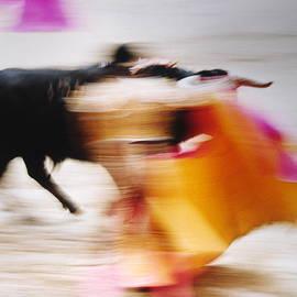 Daniel Gomez - Bullfight  4