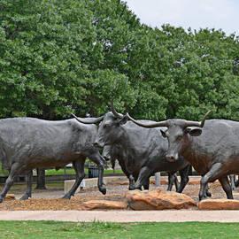 Christine Till - Bull Market
