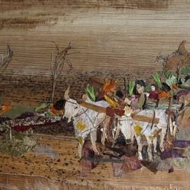 Basant Soni - Bullock cart on Cross country road