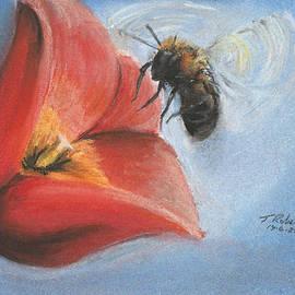 Tristan Roberts - Bumble Bee