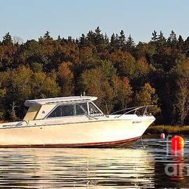 J L Kempster - Buoys and Boat