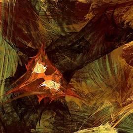 Sascha Henn - Burning Fractal