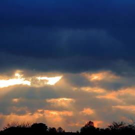 Rumyana Whitcher - Burning Sky Sunset