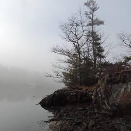 Bill Tomsa - Burning Through the Fog