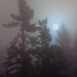Randy Hall - Burning Through The Fog