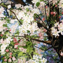 Barbara Jewell - Burst Of Spring