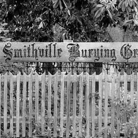 Cynthia Guinn - Burying Ground