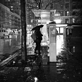Miriam Danar - Bus Stop in the Rain