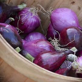 Julie Palencia - Bushel of Red Onions Farmers Market