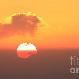 Stephen Allen - Bushfire Sunrise