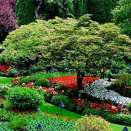 Lisa  Phillips - Butchart Gardens