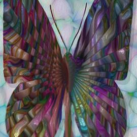 Jack Zulli - Butterfly 3