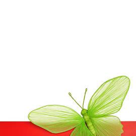 Maria Bobrova - Butterfly Card 1