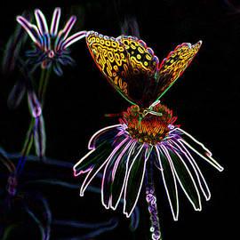 E B Schmidt - Butterfly Garden 03 - Great Spangled Fritillary