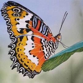Lillian  Bell - Butterfly