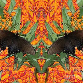 E B Schmidt - Butterfly Reflections 06 - Spicebush Swallowtail