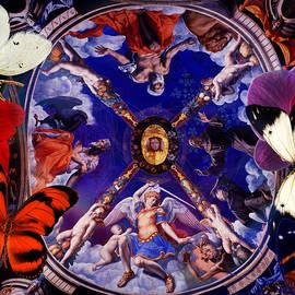 Joseph Mosley - Butterflies in Cappella di Eleonora