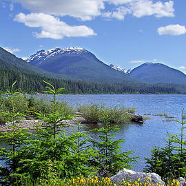 George Cousins - Buttle Lake