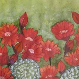 Usha Rai - Cactus flowers