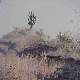 Brent Ciccone - Cactus Hill