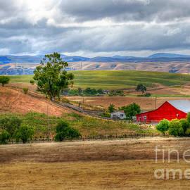 Dawn  De Vos - California Ranch