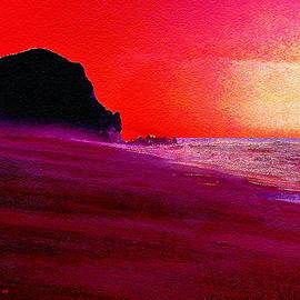 Bob and Nadine Johnston - California beaches