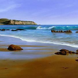 Cliff Wassmann - California Coast