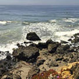 David Berg - California Coast
