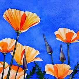 Eva Nichols - California Poppies I