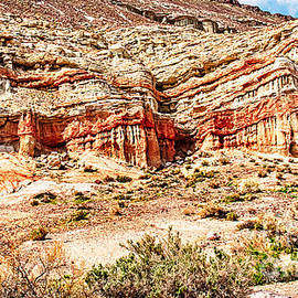 Bob and Nadine Johnston - California State Parks Red Rock Canyon