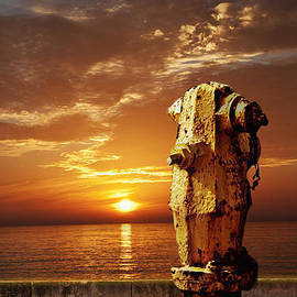 Larry Butterworth - California Sunset With Fire Hydrant