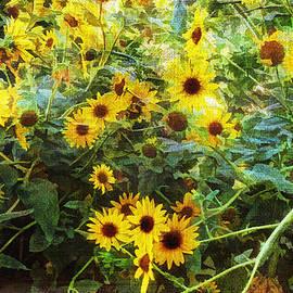 Douglas MooreZart - California Wild Sunflowers No. 2
