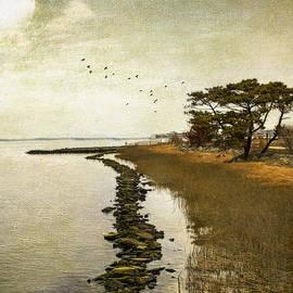 John Rivera - Calm at the waters edge